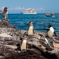Christmas in Ecuador & Galapagos 2015 - 5 day cruise on the Beluga Yacht