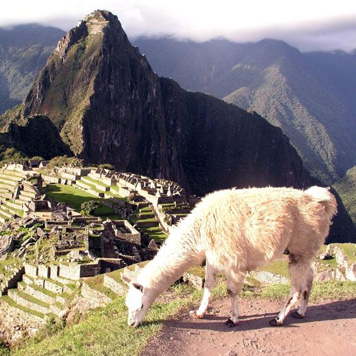 Machupicchu Cusco - Luxury Peru Tour 6