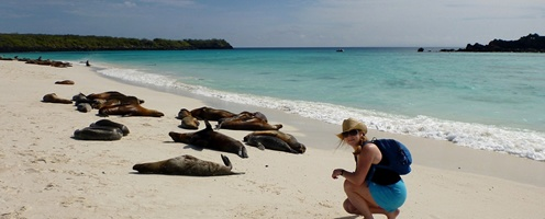 Luxury Peru & Galapagos Cruise