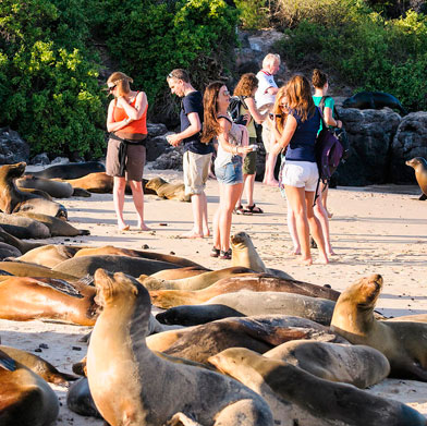 Peru and The Galapagos Islands
