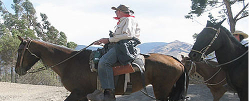 Paso Horse riding tour through the Urubamba Valley - Private