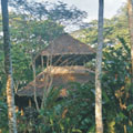 Wasai Lodge